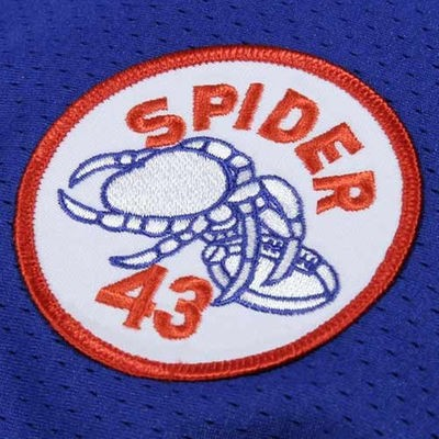 Lawrence Taylor Mitchell & Ness Jersey | Spider Patch